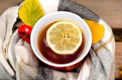 Red mug and lemon wrapped  in a blanket on a bench, leaves. Red mug with a hot drink and lemon wrapped  in a blanket on an outdoor bench in autumn with yellowed Stock Images