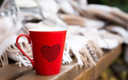 Red mug wrapped in a blanket on a bench. Red mug with a hot drink wrapped in a blanket on an outdoor bench in autumn Stock Images