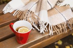 Red mug wrapped in a blanket on a bench. Red mug with a hot drink wrapped in a blanket on an outdoor bench in autumn Stock Photography