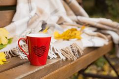Red mug wrapped in a blanket on a bench, leaves. Red mug with a hot drink wrapped in a blanket on an outdoor bench in autumn with yellowed leaves Royalty Free Stock Images