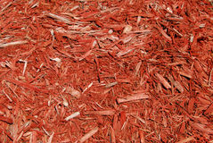 Red mulch Royalty Free Stock Photos