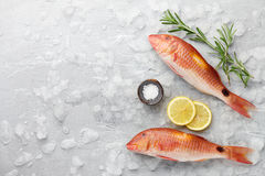 Red mullet fish cooking Royalty Free Stock Images