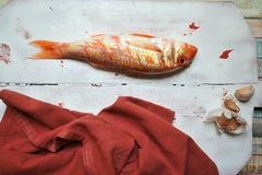 Red mullet fish and garlic on a vintage white plate Royalty Free Stock Photography