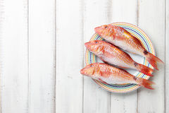 Red mullet fish on plate Royalty Free Stock Photo