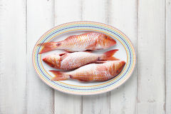 Red mullet fish on plate Royalty Free Stock Photography