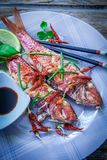 Red mullet fish style. Two red mullet with chili pepper and soja sauce on plate with chopstick Royalty Free Stock Photo