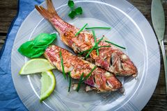 Red mullet fish style. Two red mullet with chili pepper and soja sauce on plate with chopstick Stock Photos