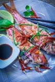 Red mullet fish style. Two red mullet with chili pepper and soja sauce on plate with chopstick Stock Image