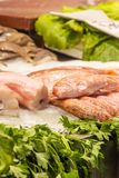 Red mullet in a market Stock Images
