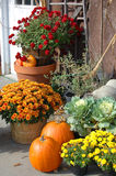 Red Mums with Ornamental Cabbage at farmers market Stock Photos