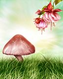 Red Mushroom Royalty Free Stock Image