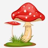 Red Mushroom Cartoon Stock Image