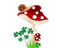 Red mushroom Stock Photography