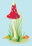 Red mushroom. Vector illustration of Mushroom Fly-Alaric stock illustration