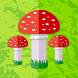 Red Mushroom. Vector illustration. Royalty Free Stock Images