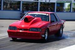 Mustang drag car Royalty Free Stock Image