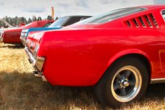 Red Mustang stock photography