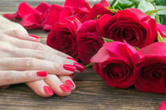 Red nail manicure with red roses around Royalty Free Stock Image