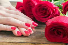 Red nail manicure with red roses around Royalty Free Stock Photos