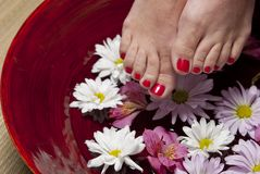 Red nail polish Royalty Free Stock Photography
