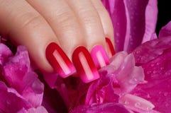 Red nail polish. Royalty Free Stock Photos