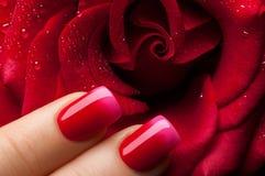 Red nail polish. Stock Photography
