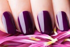 Red nail polish. Royalty Free Stock Images