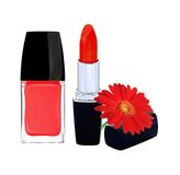 Red nail polish, lipstick and red gerbera flower on white Royalty Free Stock Photography