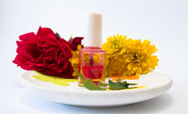 Red nail polish on a plate Stock Photo