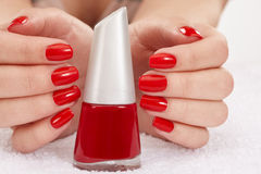 Red nails Royalty Free Stock Image