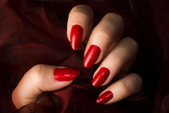 Red nails. Female hand with red nails is holding dark red fabric Stock Images