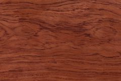 Red natural wood texture. Extremely high resolution photo.