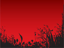 Red Nature. Work with vectors,illustration Stock Photography