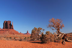 Red Navajo Sandstone of Monument Valley. The Beautiful Red Navajo Sandstone of the Iconic Landscape of Monument Valley stock photos