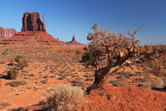 Red Navajo Sandstone of Monument Valley. The Beautiful Red Navajo Sandstone of the Iconic Landscape of Monument Valley royalty free stock image