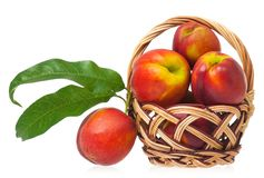 Red nectarines Royalty Free Stock Image