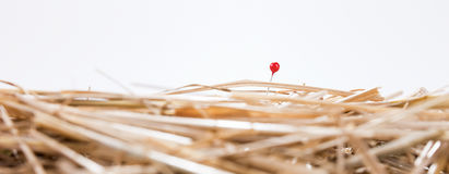 Red needle is in the haystack. Challenge and search Stock Photo