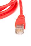 Red network cable Royalty Free Stock Photo