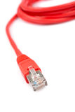Red network cable Royalty Free Stock Image