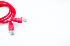 Red network cable. In isolated white background Royalty Free Stock Photo