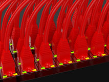 Red network cables Royalty Free Stock Image