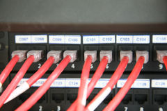 Red network switch Stock Photography