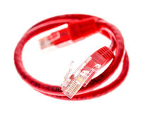 Red network UTP cable with RJ45 connector isolated on white. Royalty Free Stock Photos