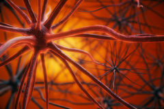 Red neuron background Stock Photography