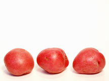 Red new potatoes royalty free stock images