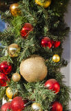 Red New year decor on a branch Royalty Free Stock Image