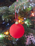 Red New Year's ball on a branch of a Christmas tree Royalty Free Stock Photo