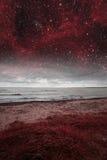 Red night at sea. Stock Image
