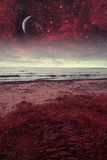 Red night at sea. Royalty Free Stock Photos