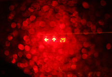 Red night traffic light Stock Image